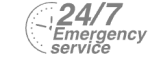 24/7 Emergency Service Pest Control in Havering-atte-Bower, Abridge, RM4. Call Now! 020 8166 9746